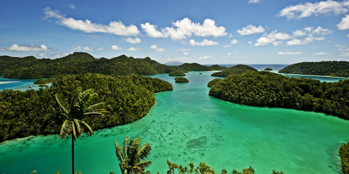 WEST+PAPUA+BECOMES+WORLD%27S+FIRST+CONSERVATION+PROVINCE
